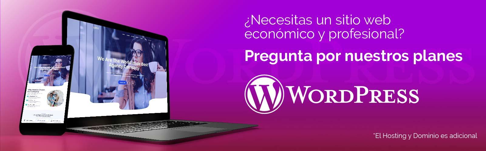 WORDPRESS-01.jpg