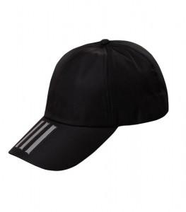CAP 1